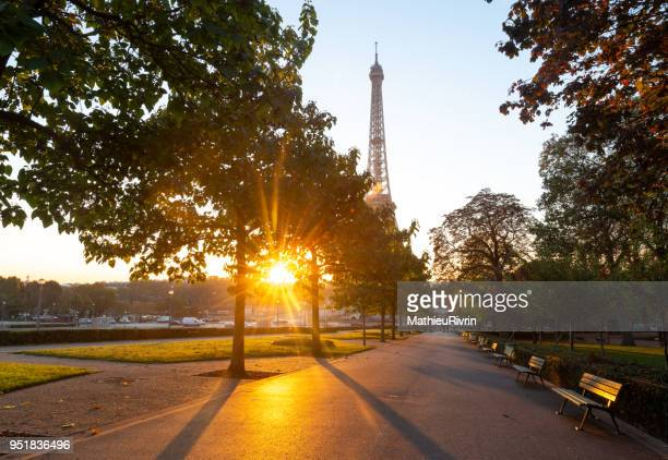 Delicious sunrise light in Paris in front of the Eiffel Tower