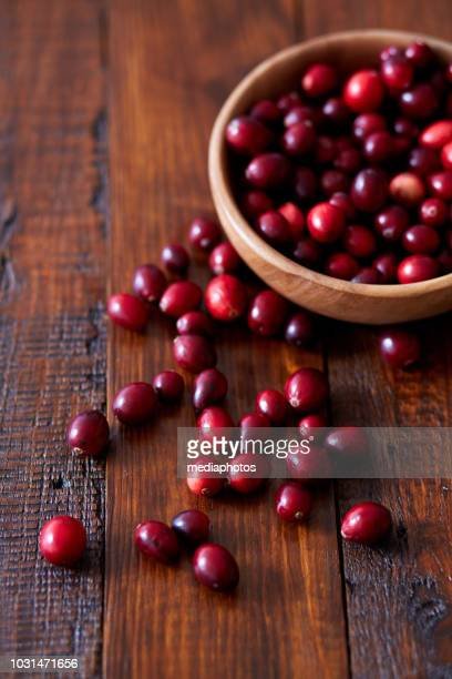 delicious wild cranberries - cranberry harvest stock pictures, royalty-free photos & images