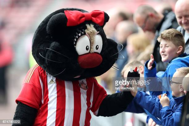 Delilah the mascot for Sunderland greets fans prior to the Premier League match between Sunderland and AFC Bournemouth at the Stadium of Light on...