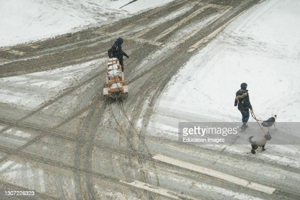 Deliveries and dog walking during snowstorm, Manhattan, New York.