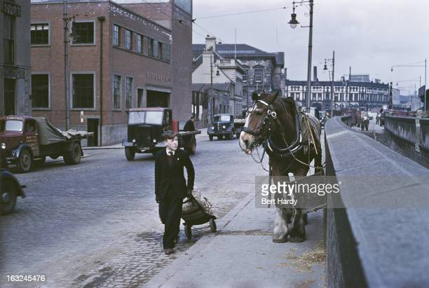 A delivery boy passing a carthorse Belfast Northern Ireland June 1955 Original publication Picture Post 7825 Belfast pub 25th June 1955