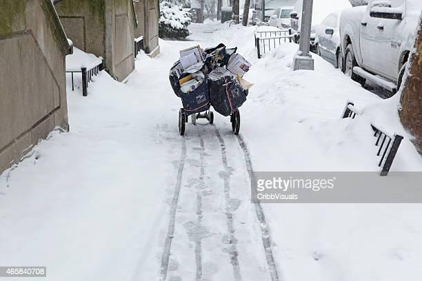 USPS Lieferung Einkaufswagen auf die Brooklyn Heights street im Schnee Sturm