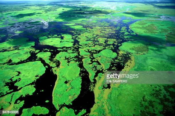 Delta du Mississippi en vue aérienne circa 2000 Louisiane Etats Unis