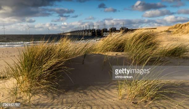 Delta Works and Sand dunes on the beach, Kamperland, Zeeland, Holland