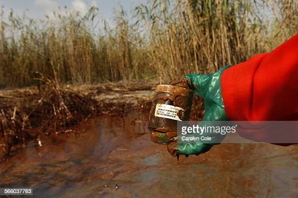 DELTAGreenpeace senior campaigner Lindsey Allen takes water samples along a 20yard area of marsh where oil is thick in concentration near the south...