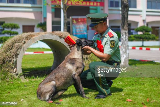 A demobilized armed police officer shares an emotional moment in Ningbo City east Chinas Zhejiang Province Sept 5 2017 Its time for armed police who...