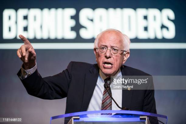 Democratic presidential candidate Sen Bernie Sanders speaks to the crowd during the 2019 South Carolina Democratic Party State Convention on June 22...
