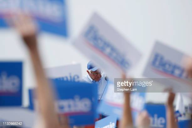 Democratic presidential candidate US Sen Bernie Sanders speaks during a campaign rally at the Great Meadow Park in Fort Mason on March 24 2019 in San...
