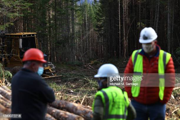 Democratic U.S. Senate candidate Sara Gideon gets a tour of a spruce and fir logging site from Jim Nichols, former executive director of Professional...