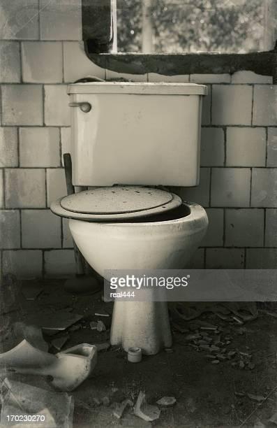 Demolished Toilet