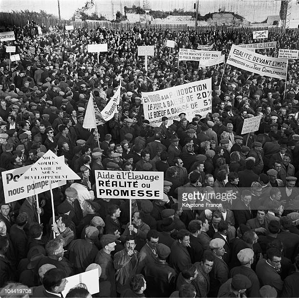 Demonstration Of Calvados' Breeders In Caen In 1967