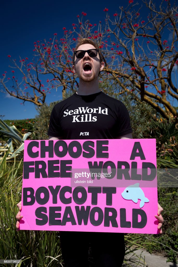protest against sea world pictures getty images