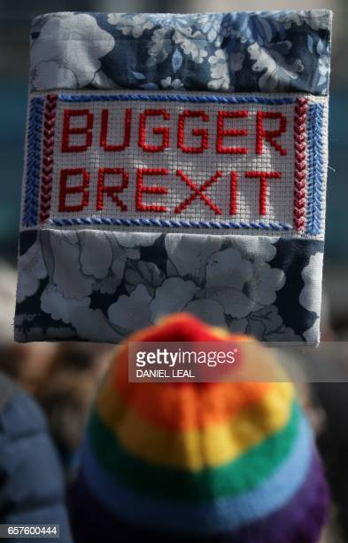 A demonstrator holds a placard that reads 'Bugger Brexit' as they prepare to participate in an anti Brexit proEuropean Union march in London on March...
