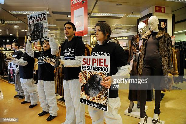 A demonstrator holds up a skinned mink as other protesters hold up banners in front of mink coats on sale in a shopping mall to protest against the...