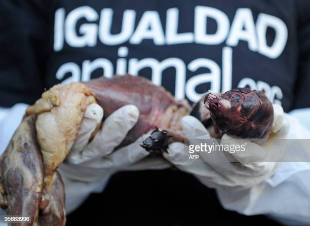 A demonstrator holds up a skinned mink in front of a shopping mall selling mink coats to protest against the mistreatment of animals as part of a...