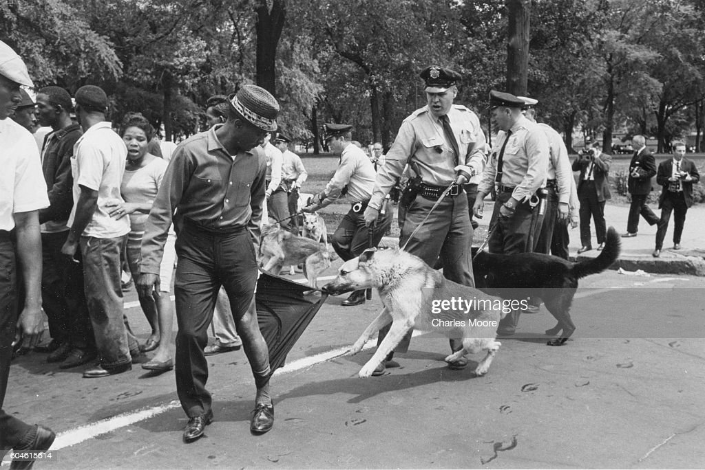 A demonstrator looks back as a police dog, held by an officer with a billy club, tears his trouser leg, Birmingham, Alabama, May 3, 1963. Police officers used both dogs and firehoses to break up the non-violent demonstration.