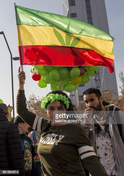 A demonstrator waves a flag during the 'Grow your rights' rally in Santiago demanding the depenalization of marijuana on June 03 2017 / AFP PHOTO /...
