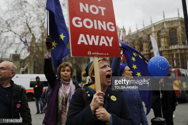 Demonstrators carry EU flags and shout slogans outside the Houses of Parliament in central London on March 21 2019 central London on March 21 2019 A...