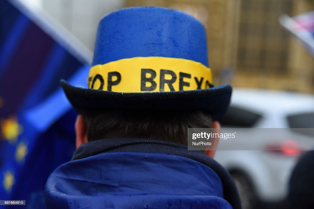 Protest Against Brexit Outside The Parliament