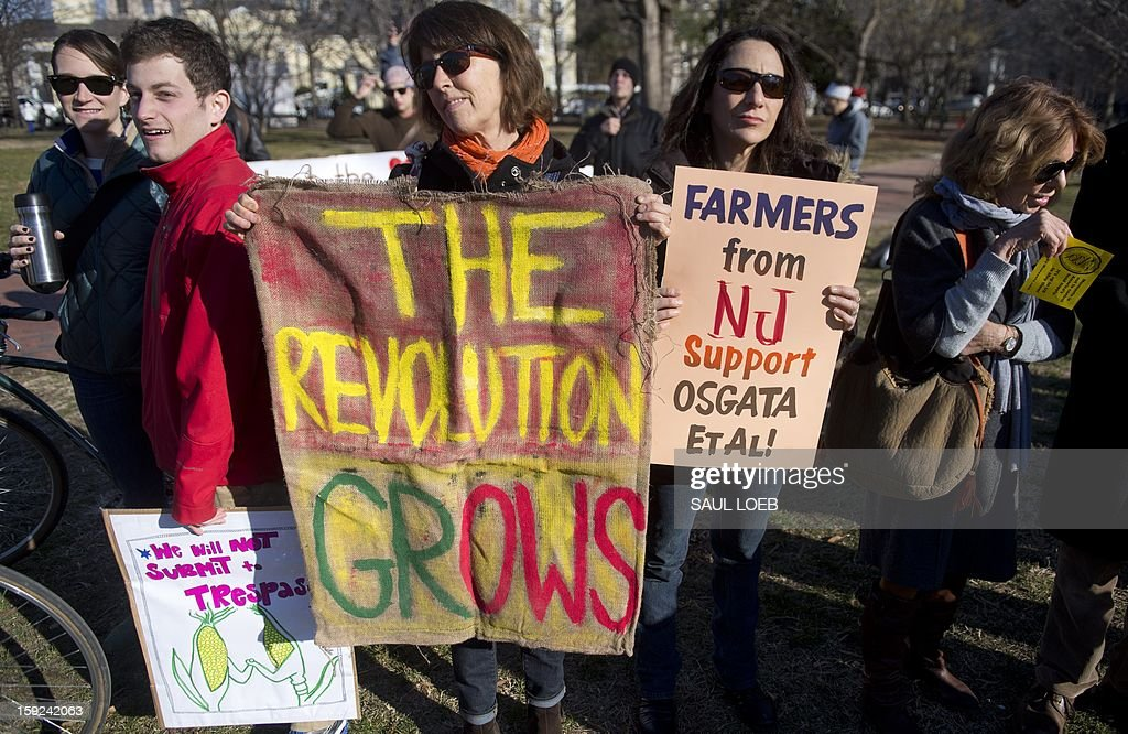 Demonstrators hold signs supporting family farms and opposing genetically engineered food as part of the group Safe Food Activists and Concerned Consumers during a protest in Lafayette Park adjacent to the White House in Washington, DC, on January 10, 2013. AFP PHOTO / Saul LOEB