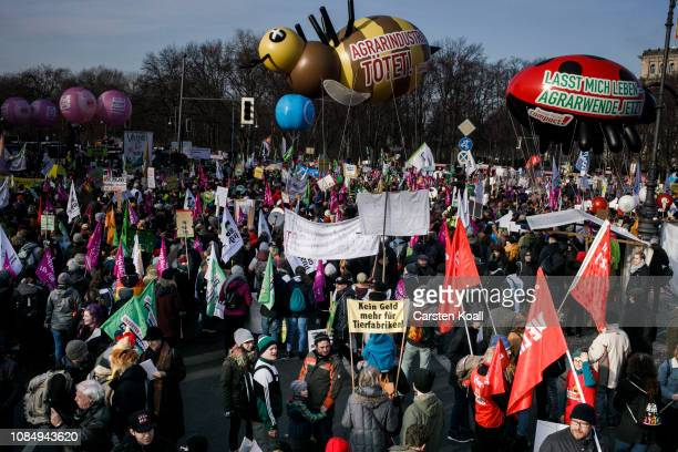 Demonstrators participate in a protest march over agricultural policy on January 19 2019 in Berlin Germany Thousands of people participated in the...