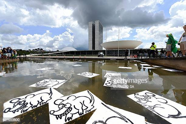 TOPSHOT Demonstrators place placards depicting rats on a fountain in front of the National Congress in Brasilia during a protest against corruption...