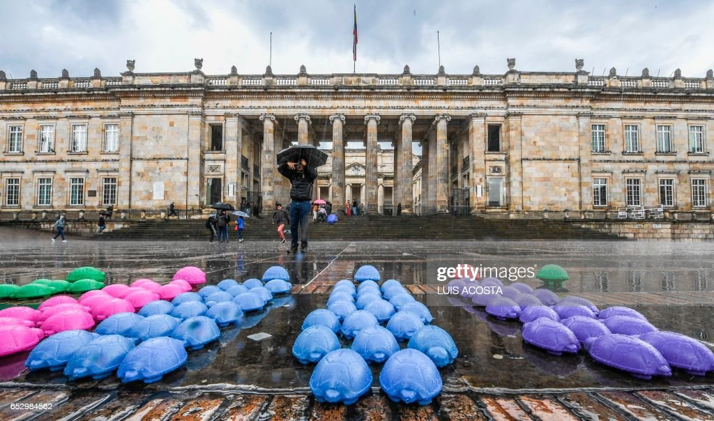 Demonstrators place plastic turtles in Bolivar square, Bogota during a protest against the Senate's slow pace in approving a new law, the Special Jurisdiction for Peace, on March 13, 2017. The creation of a special jurisdiction for peace is a key part of the peace deal signed by the government of Juan Manuel Santos and the FARC rebels in November 2016. / AFP PHOTO / Luis Acosta