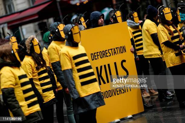 Demonstrators stand wearing bees masks and costumes during a demonstration for biodiversity called by the World Wide Fund for Nature on May 4, 2019...