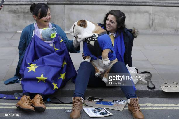 Demonstrators wear costumes in the likeness of the European Union flag and play with a bulldog during the antiBrexit People's Vote rally in London UK...