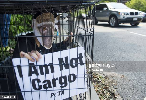 Demonstrators with PETA, including supporters inside cages wearing masks of monkeys, protest against French airline Air France for their shipping of...