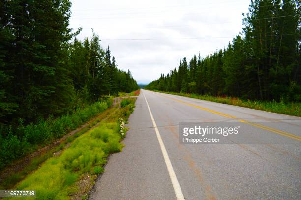 denali highway, alaska - cantwell stock pictures, royalty-free photos & images