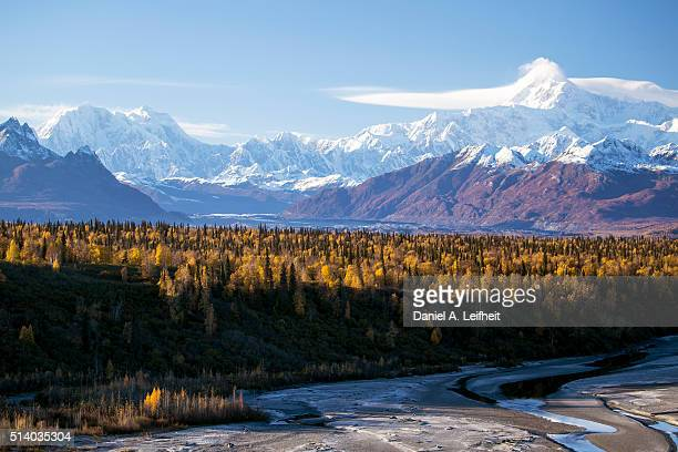 denali in autumn - mt mckinley stock photos and pictures