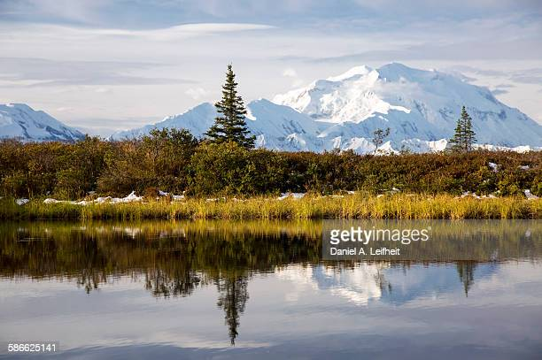 denali in fall - mt mckinley stock photos and pictures