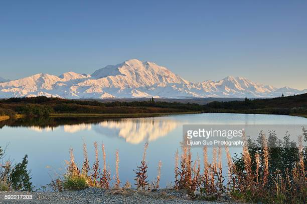 Denali Mountain and Reflection Pond