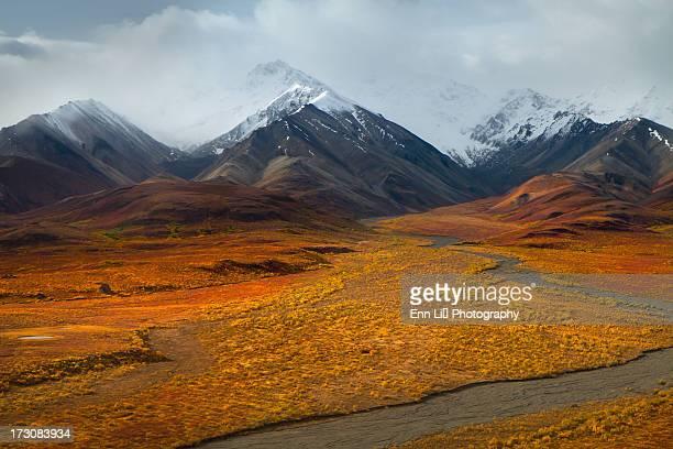 Denali  Mountain Range in Autumn