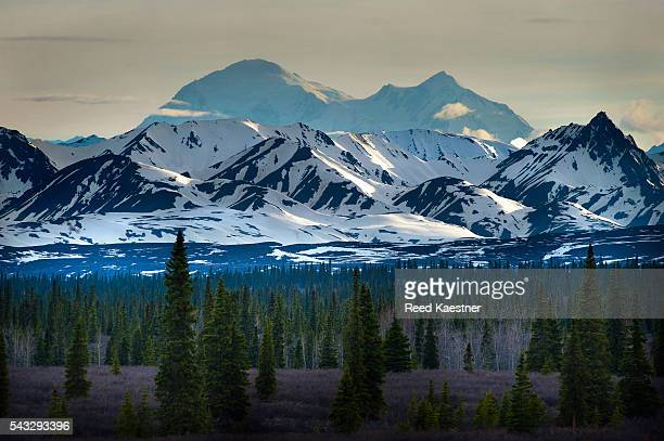 Denali mountain soars 20,000 feet above the tundra in Alaska