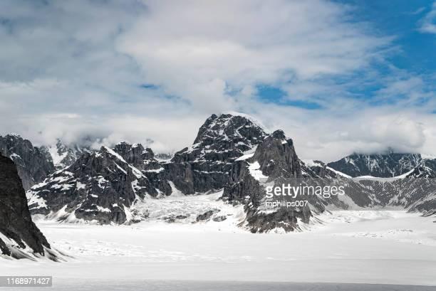 denali national park alaska glacier base camp - tundra stock pictures, royalty-free photos & images
