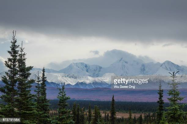 Denali National Park Wilderness