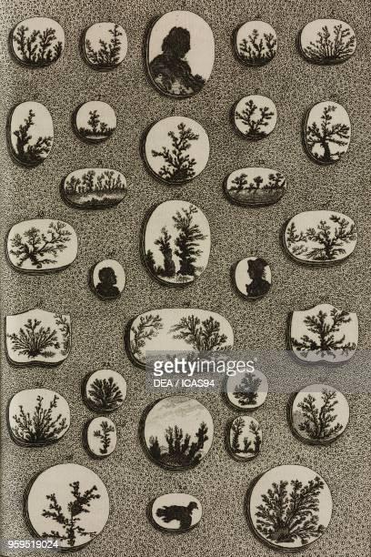 Dendrites copperplate engraving by Pierre Quentin Chedel from L'histoire naturelle eclaircie dans une de ses parties principales l'oryctologie qui...