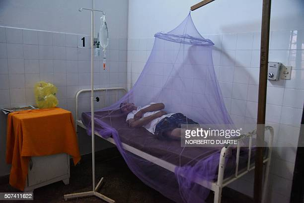 A dengue fever patient is treated in a hospital in Asuncion on January 29 2016 The mosquitoes which carry dengue usually proliferate in times of...