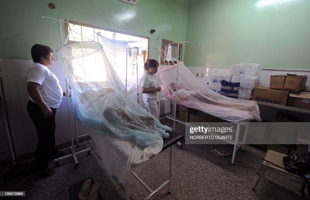 Dengue fever patients are treated in a hospital in Asuncion, on January 16, 2013. According to Paraguay's Ministry of Health there are about 500 possible cases of dengue per day in the area of Asuncion. AFP PHOTO/Norberto Duarte