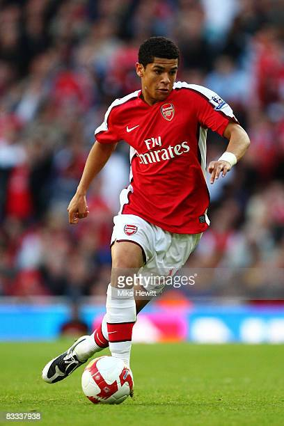 Denilson of Arsenal in action during the Barclays Premier League match between Arsenal and Everton at Emirates Stadium on October 18 2008 in London...