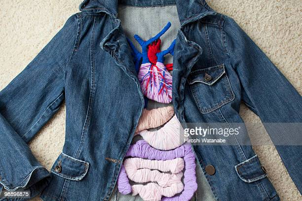 a denim jacket with the applique of the internal o - heart internal organ stock pictures, royalty-free photos & images