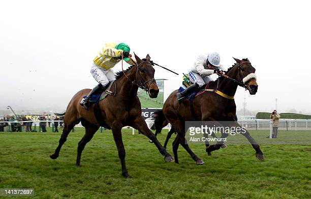 Denis O'Regan riding Cape Tribulation clear the last to win the Pertemps Final Handicap Hurdle Race at Cheltenham racecourse on March15 2012 in...