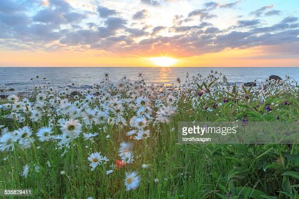 Denmark, Bornholm, Sunset over sea