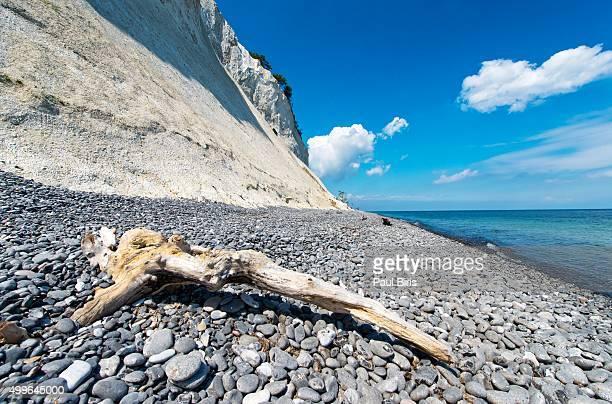 denmark, mon island, mons klint, chalk cliffs - selandia fotografías e imágenes de stock