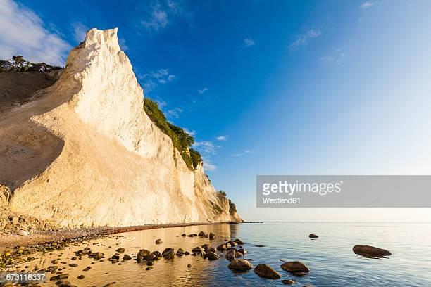 denmark, mon island, mons klint, chalk cliffs - 炭酸石灰 ストックフォトと画像