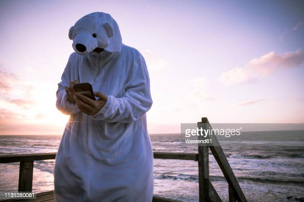 denmark, nordjuetland, man wearing ice bear costume at the beach, using smartphone - animal costume stock pictures, royalty-free photos & images
