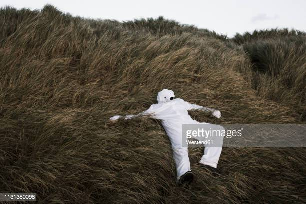denmark, nordjuetland, man wearing ice bear costume lying in grass - bear suit stock pictures, royalty-free photos & images