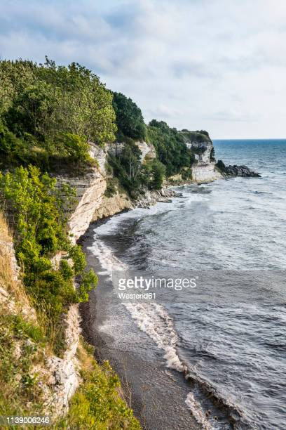 denmark, zealand, stevns klint, white chalk cliff - zealand denmark stock pictures, royalty-free photos & images
